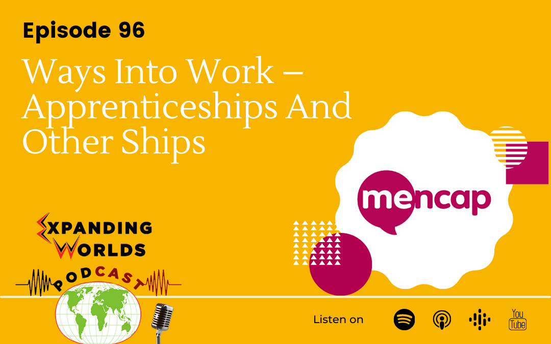 96 Ways Into Work – Apprenticeships And Other Ships